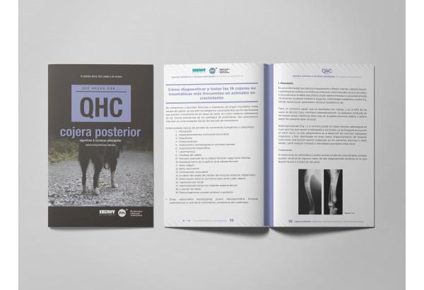 Revista QHC Cojera posterior -Revistas
